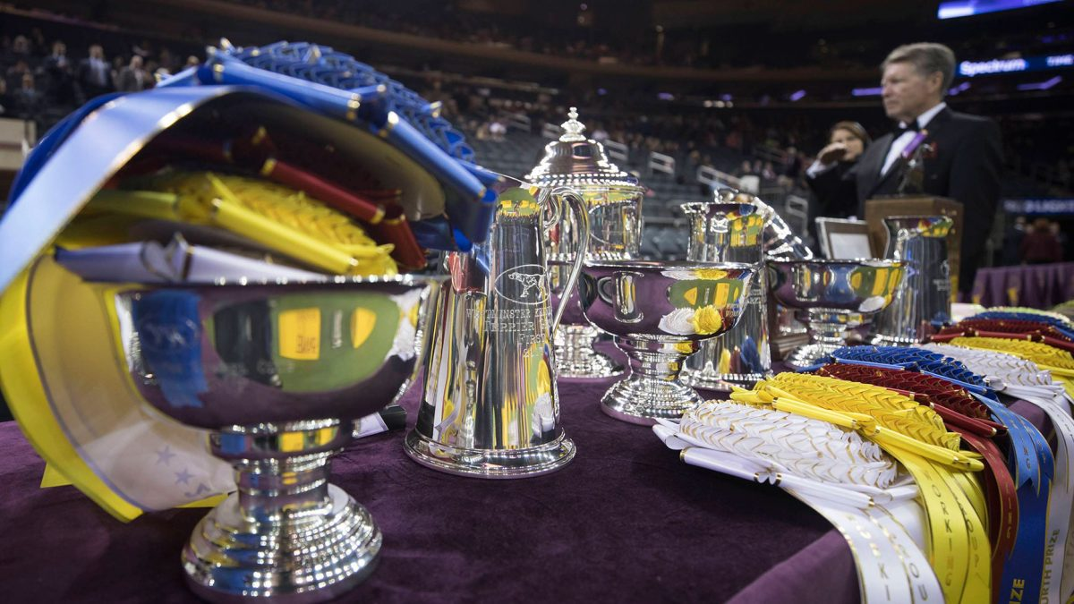 Westminster-Dog-Show-Trophies_1040x585