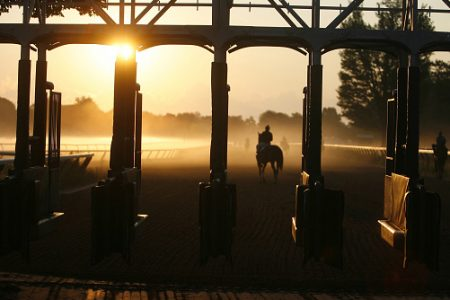 SARATOGA SPRINGS, NY -August 21, 2008: Silhouetted horses galloping in morning workout behind starting gate at Saratoga Race Course. August 21, 2008 (Photo by Horsephotos /Getty Images)