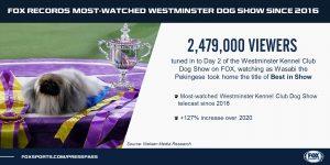 WKC Dog Show Viewership